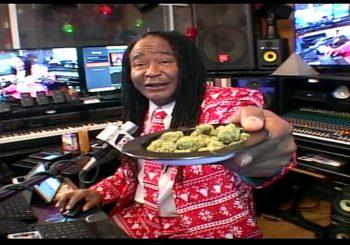 Marijuana 4 Dummies:  (12-17-18)