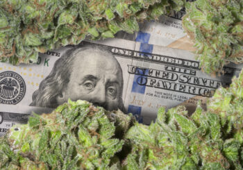 Marijuana 4 Dummies: California Senate Passes Legislation For State-Chartered Cannabis Banks (5-27-19)