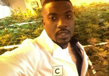 Marijuana 4 Dummies: Outdoor Cannabis Growers Calendar 2019 & Ray J Launches Pre-roll Brand (6-10-19)