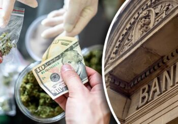 Marijuana 4 Dummies: House Passes Bill To Provide Marijuana Banking & Now We Wait On Senate To Block! (9-30-19)