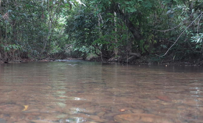 Unspoilt natural beauty surrounding Merapoh.  Image from Running Project