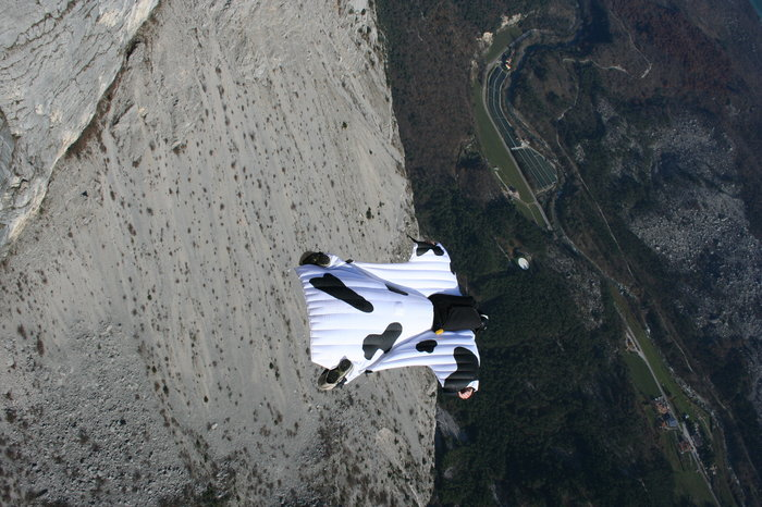 Who said cows can't fly? Image from Redbull.com