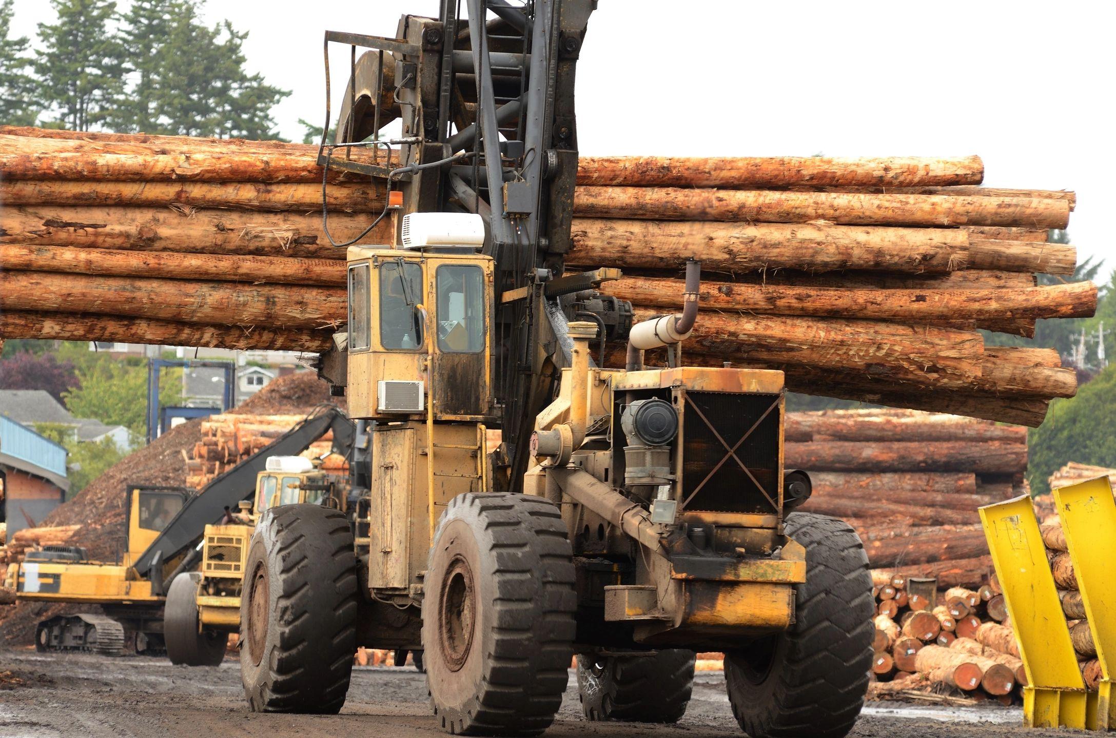 logging-3