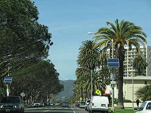 palm lined Ocean Avenue in Santa Monica, near ...