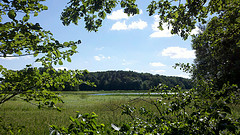Lake Maria State Park, Monticello, MN