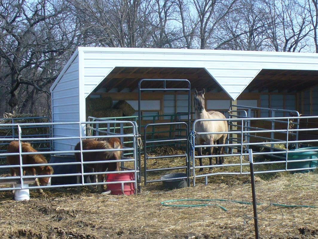 Swede's Buildings - Livestock Shed