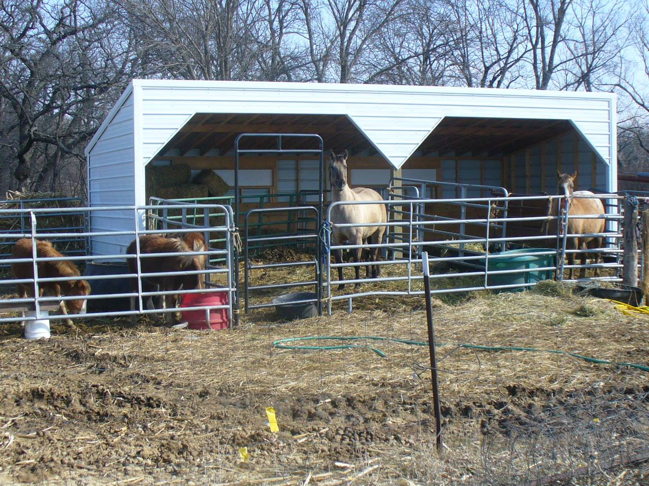 Swede's Buildings Horse Shed