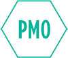 PMO Operation & Management