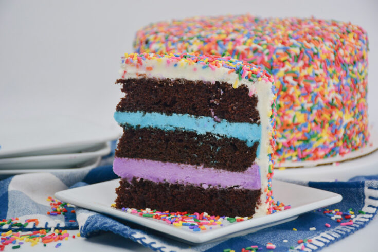 How To Make A Rainbow Cake At Home