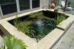 Sankey Pools (JSAquatics)  - Fish Pond