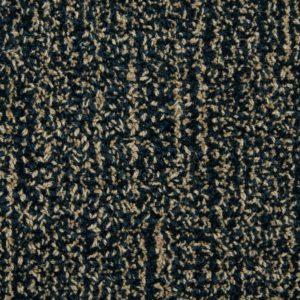Antrim Auburn Carpet in Miami