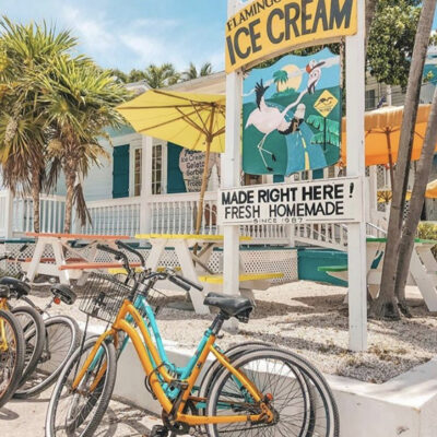 A Sweet Escape with Flamingo Crossing Ice Cream