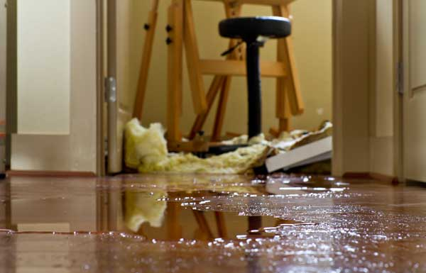 water damage dover de