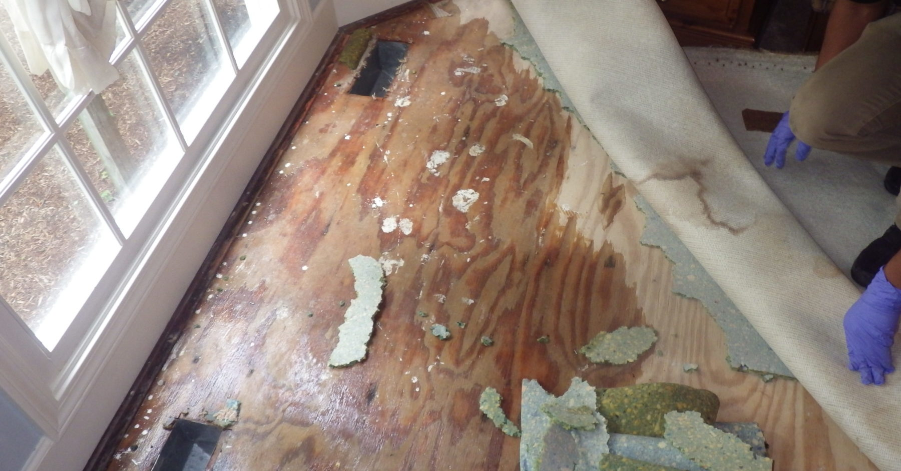 water damage smyrna