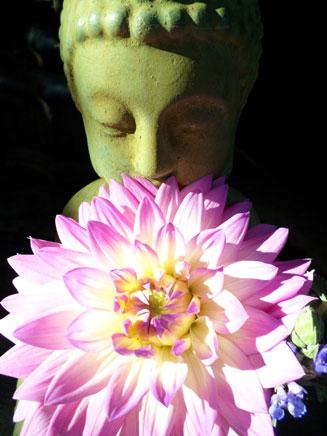Buddha Fleur in Ojai, CA/Lavender Inn, bed and breakfast
