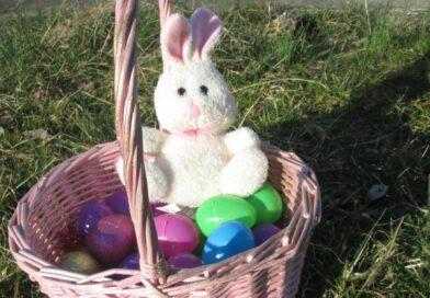 It's Bunny Time – Postponed