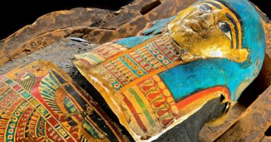 Mummies of the World at the Carnegie Science Center