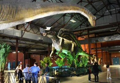 Play with Dinosaurs at Jurassic Quest