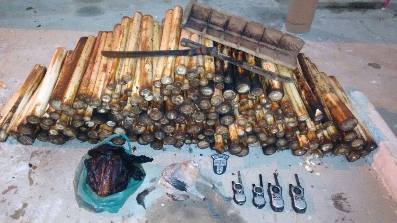 Photo of PM apreende palmito e carne de caça em Guaraqueçaba
