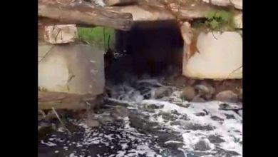 Photo of VÍDEO: Moradores denunciam despejo irregular de esgoto em rios do Litoral