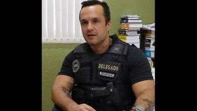 Photo of Polícia investiga se feto encontrado em lixo é produto de aborto provocado