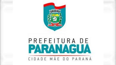 Photo of Prefeitura de Paranaguá iniciará castração de cães e gatos