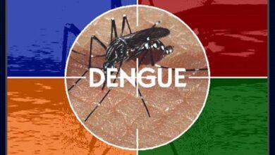 Photo of Casos de dengue aumentam mesmo com dias mais frios
