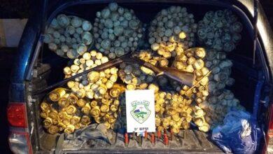 Photo of PM flagra caminhonete com 891 unidades de palmito in natura