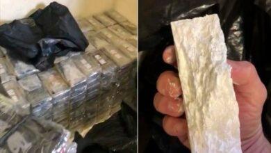 Photo of Mais apreensão de cocaína no Litoral (VÍDEO)