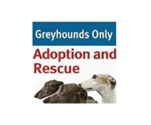 Greyhounds Only