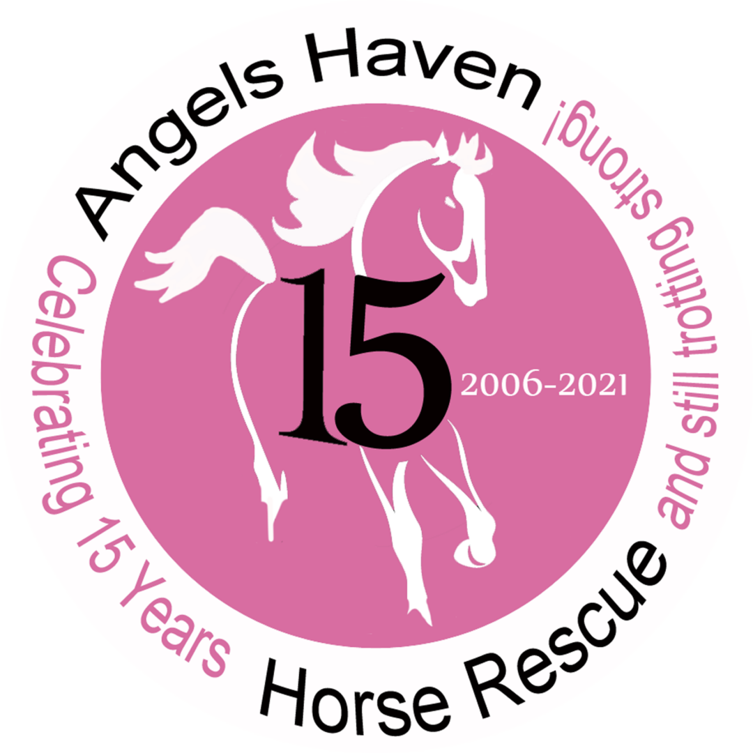 AHHR-15-Year-Badge-new REV2 copyLARGE