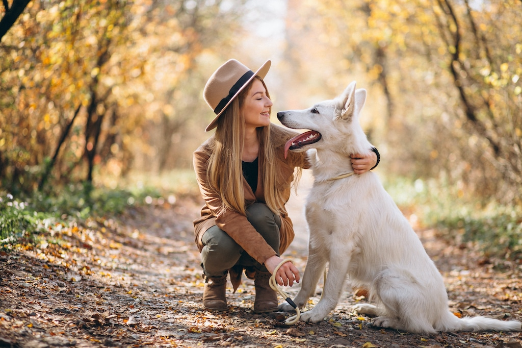 Pet insurance with Downey Insurance Group