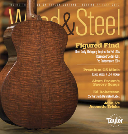 Wood-Steel-Fall-2013-cover-430x411