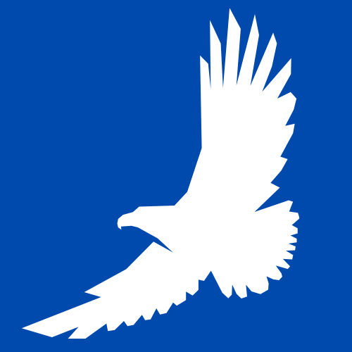 Company logo of flying eagle