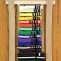 belt progression for IMA Karate in Louisville, Colorado