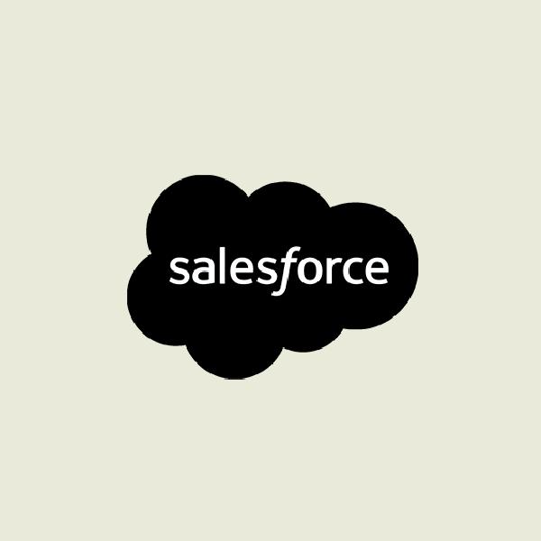 Ronin Productions client salesforce