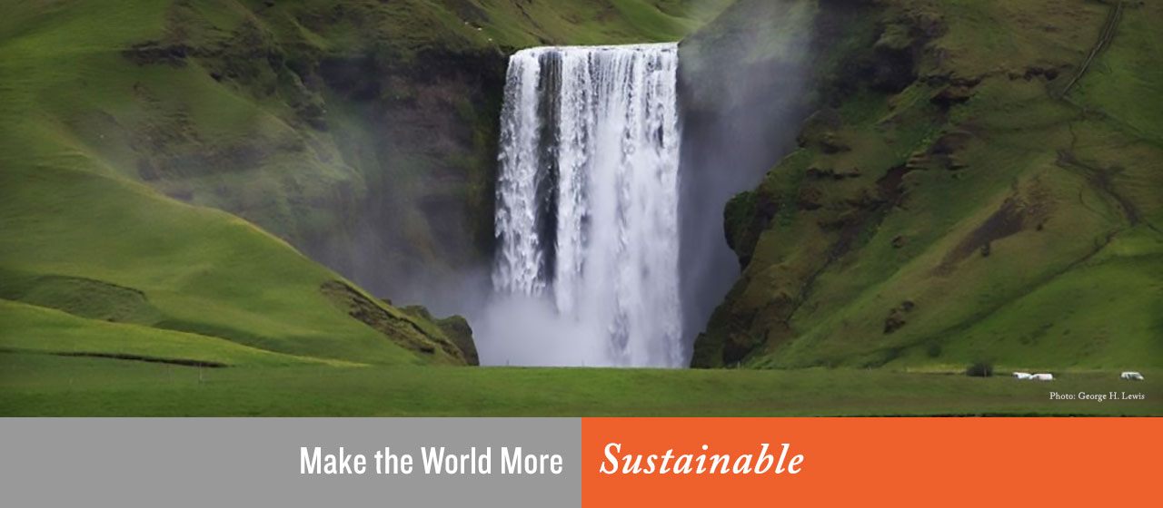 Make the World More Sustainable