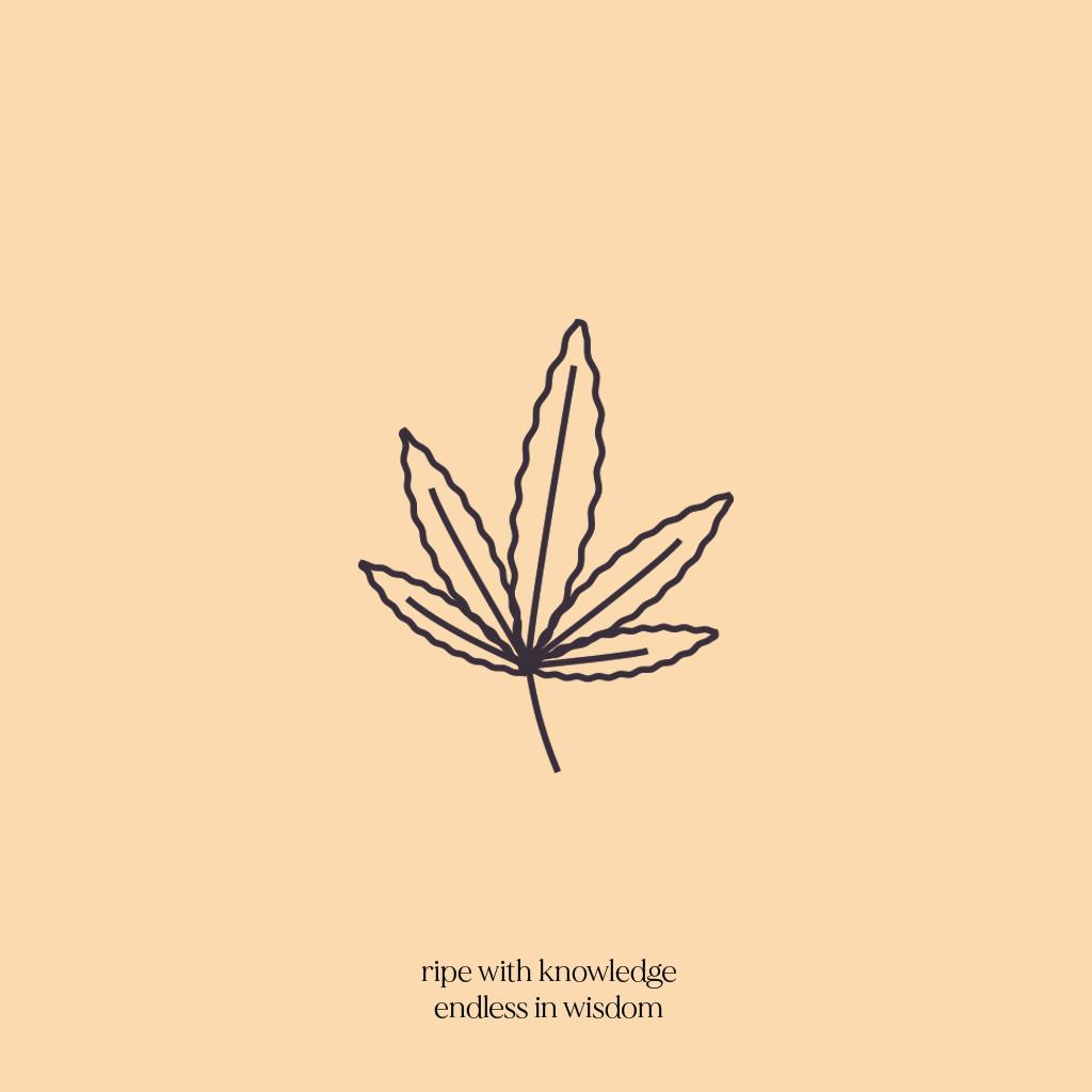 orange leaf2