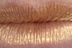 Gold Bar LipSense