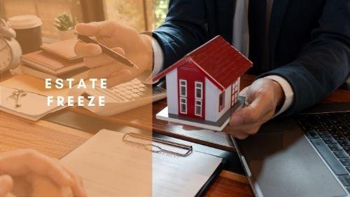 Estate Freeze