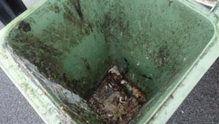 dirty bins