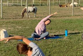 prog-yoga