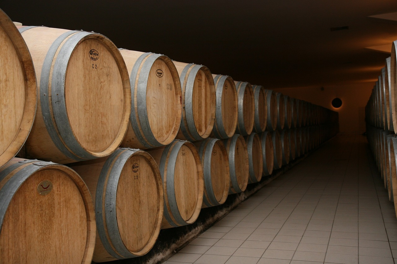 bordeaux, france, winery