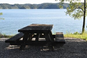 picnic, picnic table, outdoor lunch