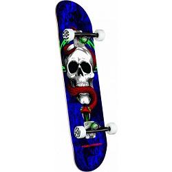 PP Skull & Snake 7.75x31-250