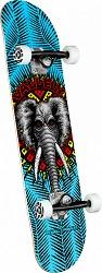 PP Vallelly Elephant 8x31.45-250