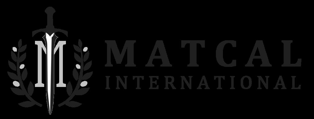 Martcal International Security Logo