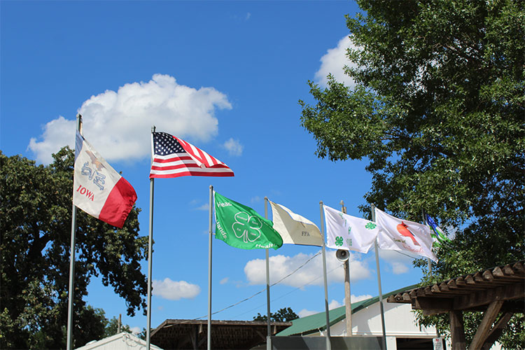 flags in a courtyard