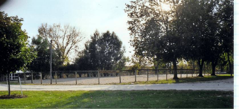 Richard Claude horse arena