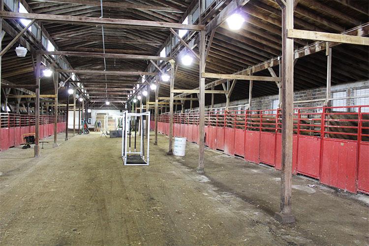 horse barn7